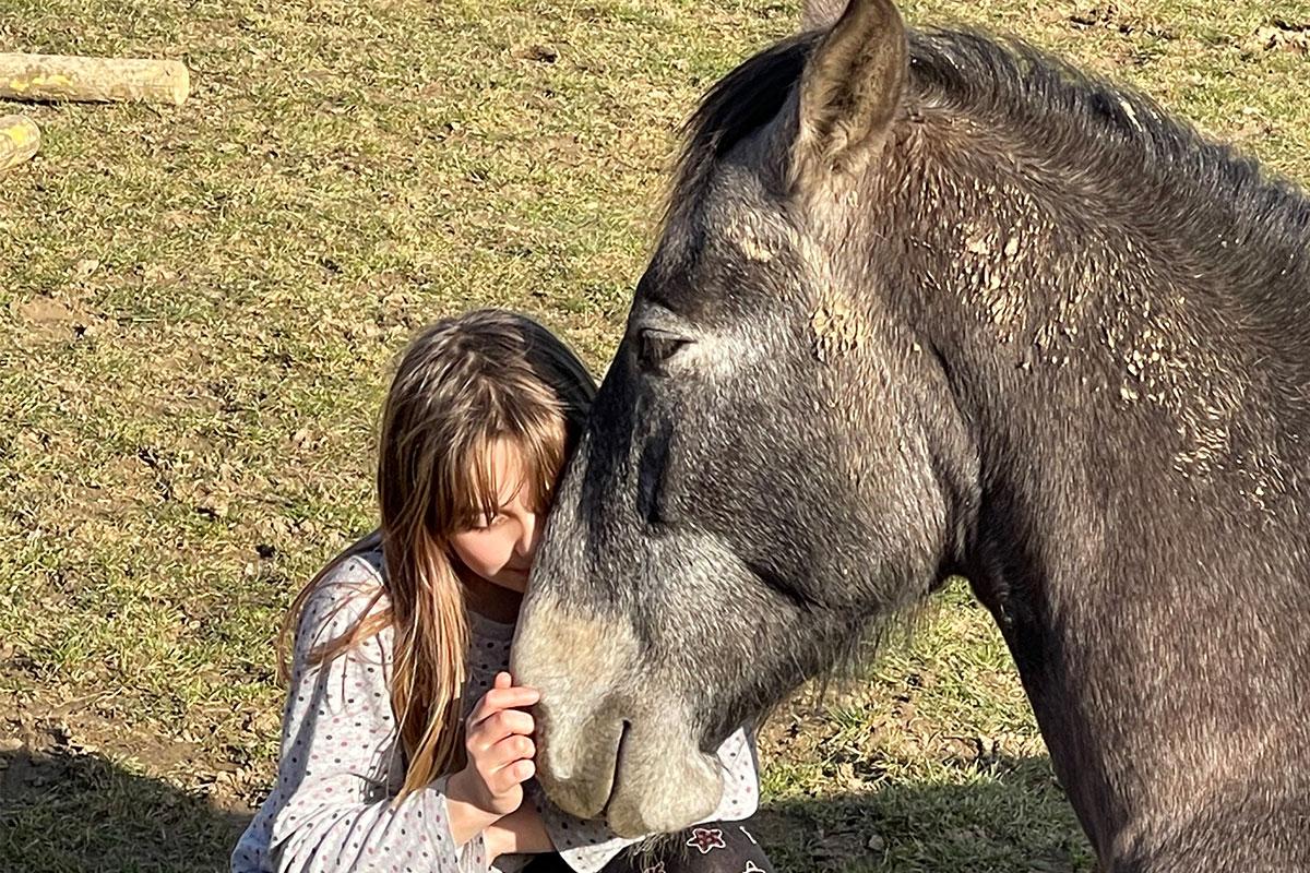 Pferdegestützte Heilpädagogik